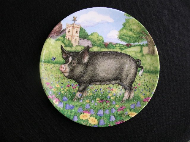 Royal Doulton PIGS 11