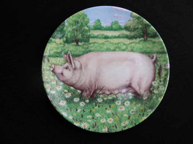 Royal Doulton PIGS 8