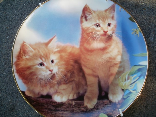 "Danbury Mint Purrfect Portraits - ""Sugar and Spice   """