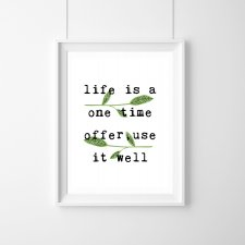 Plakat life is a one time offer,use it well - A3
