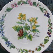 Herbs  by  Royal    Worcester   kolekcjonerski rarytas