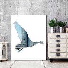 ptaki 30 - plakat A4