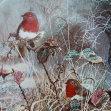 coalport 1993 -  robin redbreast  - by David Feather -frosty mornings limited edition collection 15,000
