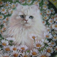 Danbury Mint 1996 Cats Among the Flowers  Kolekcjonerski talerz porcelanowy by Lesley Anne Ivory