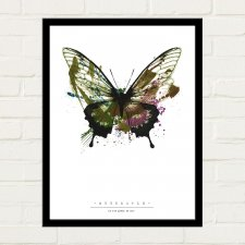 BUTTERFLY PAINTED Plakat 30x40