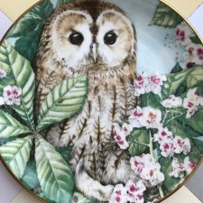 British Owls Collection ❀ڿڰۣ❀ Royal Kendal - The Tawny Owl#6