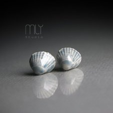 Shell/stal chirurgiczna/