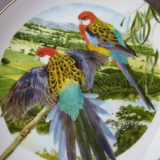 THE AUSTRALIAN GEOGRAPHIC PARROT COLLECTION BY TONY OLIVER - 1996- EASTERN ROSELLAS - KOLEKCJONERSKI TALERZ PORCELANOWY