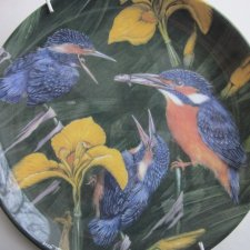 WEDGWOOD - FLEDGLINGS BY DICK TWINNEY  - KINGFISHERS