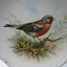 Royal Albert 1982      The Woodland Birds Collection