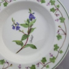 Portmeirion Welsh Wild Flowers  made in Britain rzadko spotykana seria