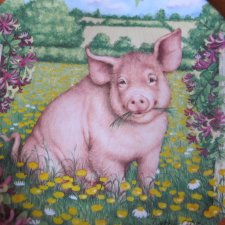 Royal Doulton 1997 - Buttercup by Debbie Cook a charming ' temworth' in the ' pigs in bloom' collection kolekcjonerski talerz porcelanowy