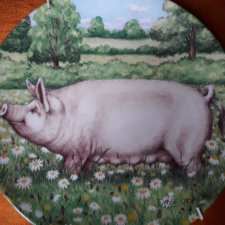 Royal Doulton 1997 - Daisy by Debbie Cook a charming ' large white' in the ' pigs in bloom' collection kolekcjonerski talerz porcelanowy
