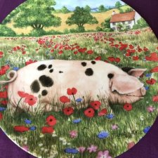 Royal Doulton 1997 - Poppy by Debbie Cook a charming ' hampshire ' with  her piglets  in the ' collection kolekcjonerski talerz porcelanowy z certy