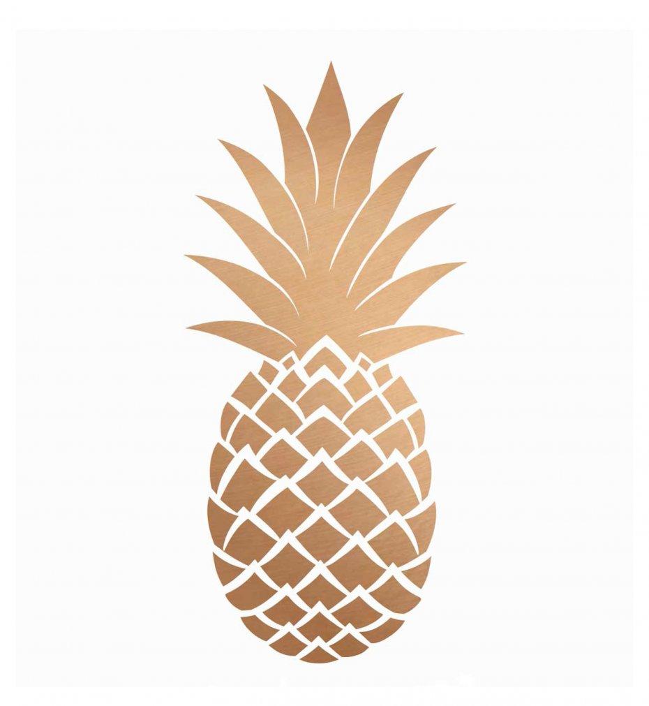 Ananas Rysunek obrazek na płótnie kwadratowy ananas