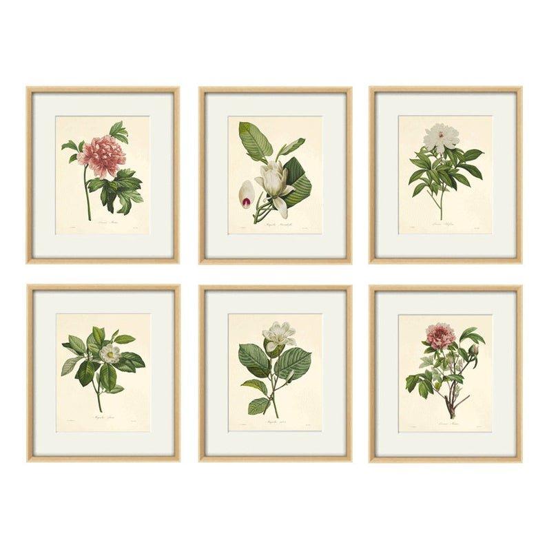 Kwiaty Grafika Plakat Wydruk Zestaw 6x A4